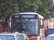 IMGP6948.jpg